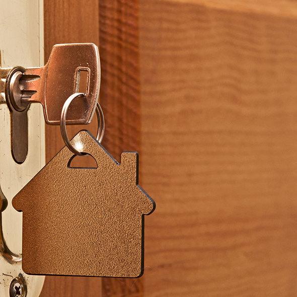protection portes fenêtres